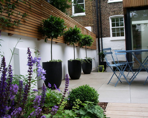 Courtyard garden design houzz for Very small courtyard ideas