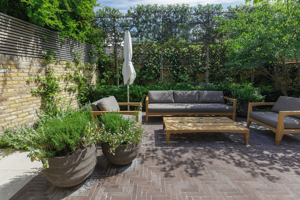 Transitional Patio by The Garden Builders