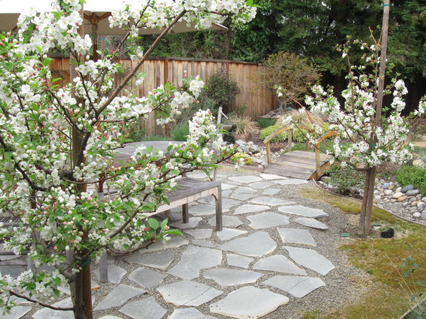 Asian Patio By Verdance Landscape Design