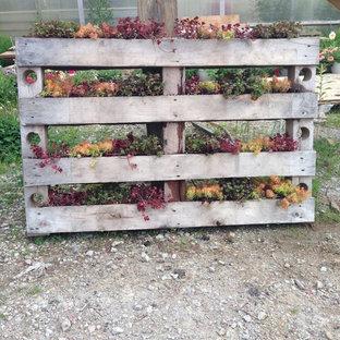 Idee per un patio o portico country dietro casa con nessuna copertura