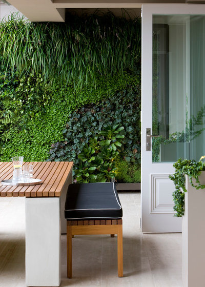 Contemporary Courtyard by Tonka Andjelkovic Design
