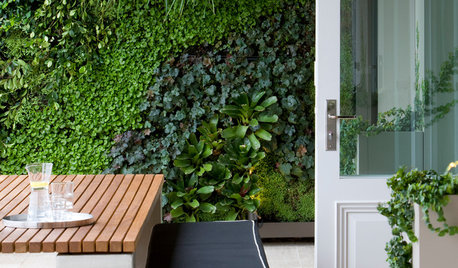 An Architect Reveals: 5 Reasons You Need a Green Wall