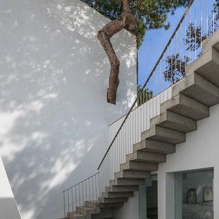 Inspiration för en mellanstor funkis gårdsplan, med en vertikal trädgård och betongplatta