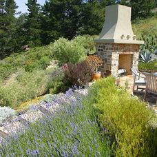 Rustic Landscape by Debra Campbell Design