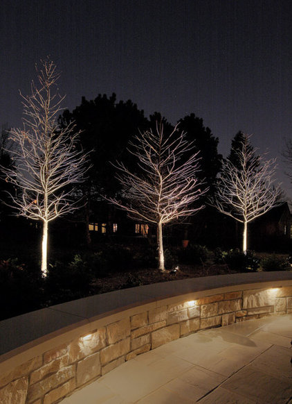 Traditional Patio by McKay Landscape Lighting