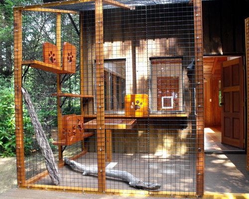 Catio Houzz