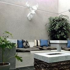 Contemporary Patio by Urban Green