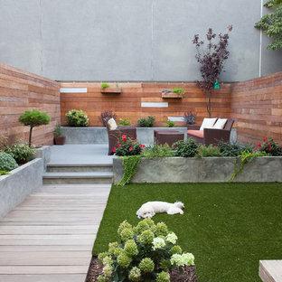 Immagine di un patio o portico moderno dietro casa con lastre di cemento e nessuna copertura