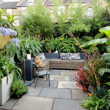 Going Green: How to Decorate Your Bare Courtyard From Scratch