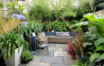 Get More Out of Your Small Courtyard With Smart Planning