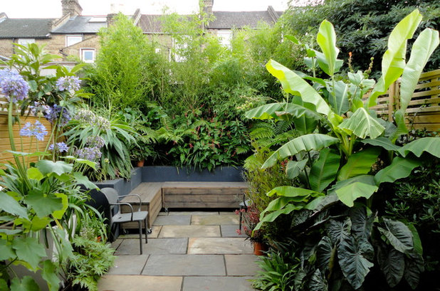 Contemporary Patio by Abigail's Gardens