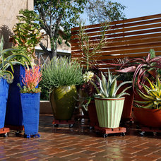 Eclectic Patio by Singing Gardens