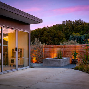 This is an example of a midcentury patio in San Francisco with concrete slab and no cover.