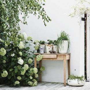 Idées déco pour un mur végétal de terrasse scandinave de taille moyenne avec une cour.