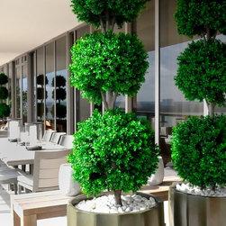 Emilio Robba Topiary - 1-844-377-2747