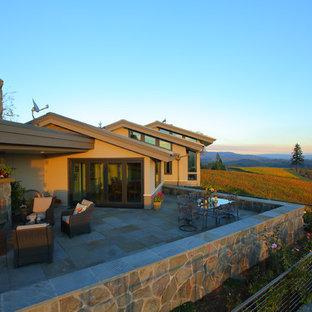 Foto di un grande patio o portico eclettico dietro casa con un focolare, pavimentazioni in pietra naturale e un tetto a sbalzo