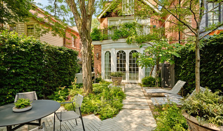 Before and After: 3 Shady Yards Become Lush Outdoor Havens