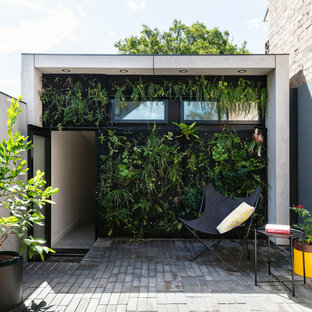 Inspiration for a mid-sized contemporary courtyard patio in Sydney with brick pavers, no cover and a vertical garden.