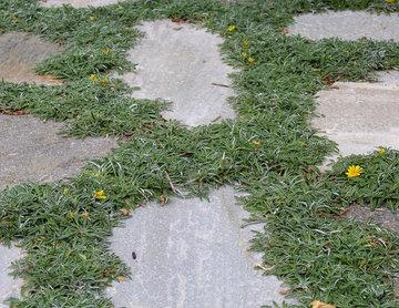 Flagstone Patio with Custom Garden Beds