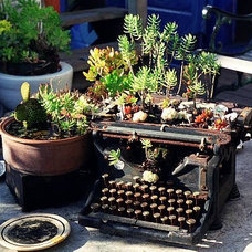 Eclectic Patio Flickr : green typewriter