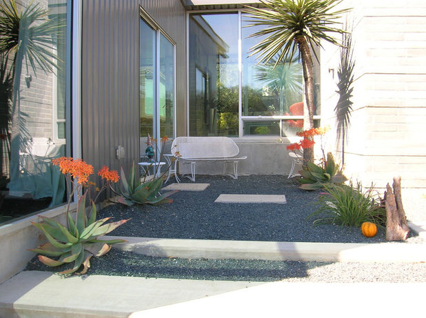 Mid-Century Patio by D-CRAIN Design and Construction