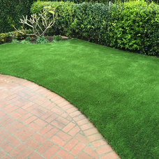 Traditional Patio by Waterless Lawnz