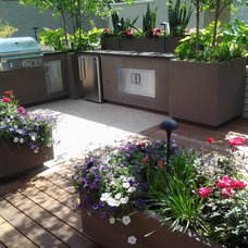 Modern Patio by Chicago Green Design Inc.
