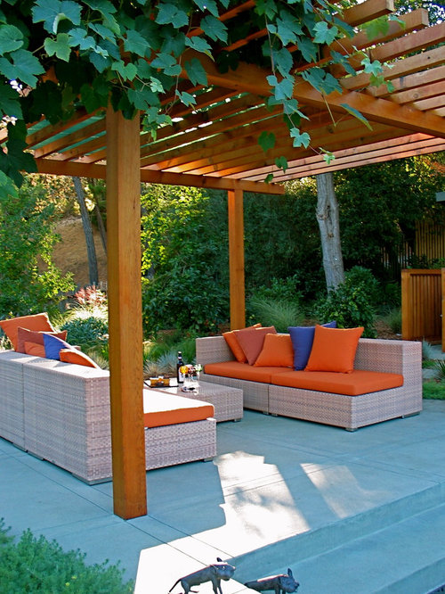 Minimalist Concrete Patio Photo In San Francisco With A Pergola