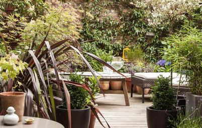 Gärten nur mit Kübelpflanzen anlegen – diese Oasen machen es vor