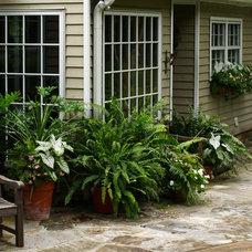 Traditional Patio by Troy Rhone Garden Design