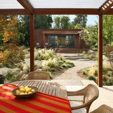 Modern Patio by Margie Grace - Grace Design Associates