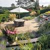Quali sono veramente i consigli per avere un giardino bello e sano?