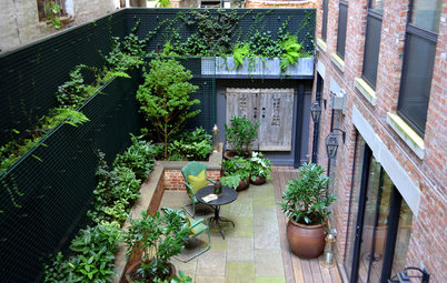 Problem Solving With the Pros: How to Build a Garden in an Urban Canyon