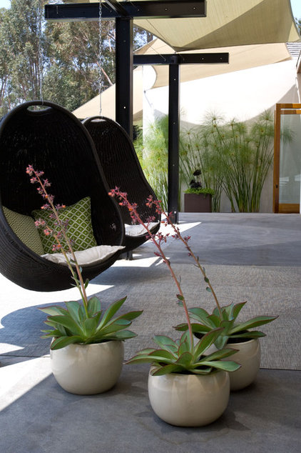 modern patio by Grounded - Richard Risner RLA, ASLA