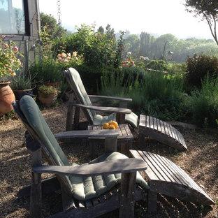 Foto di un patio o portico tradizionale con un giardino in vaso, graniglia di granito e nessuna copertura