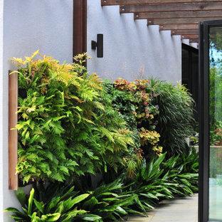 Patio - contemporary patio idea in San Francisco