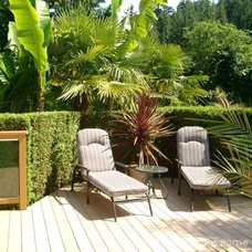 Tropical Patio by urban presentations