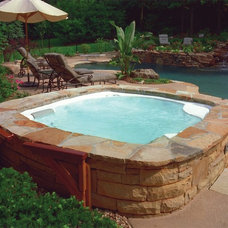 Traditional Patio by Hot Spring Spas