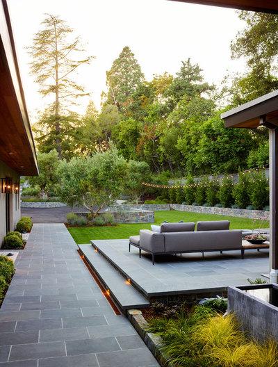 Contemporary Patio by David Thorne Landscape Architect