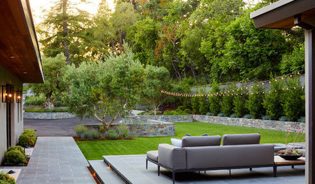 Patio of the Week: Stylish Family-Friendly Front Yard