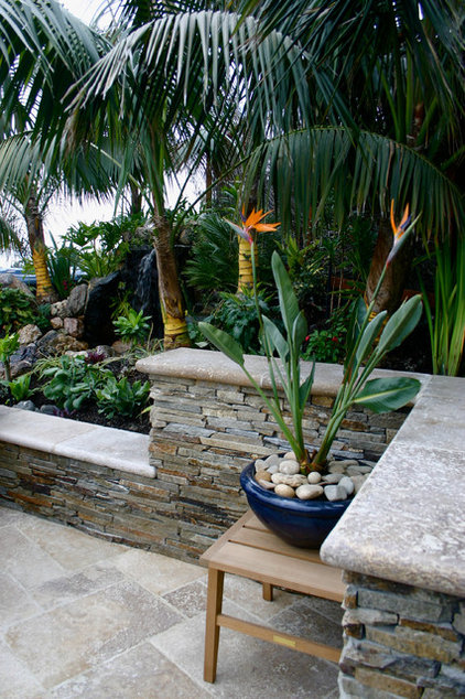 Tropical Patio by Golden Gate Palms and Exotics