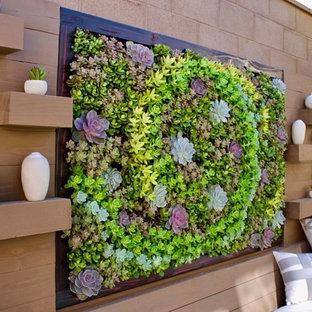 Ispirazione per un patio o portico minimalista dietro casa con nessuna copertura