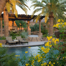 tropical patio by Red Rock Pools and Spas and Red Rock Contractors