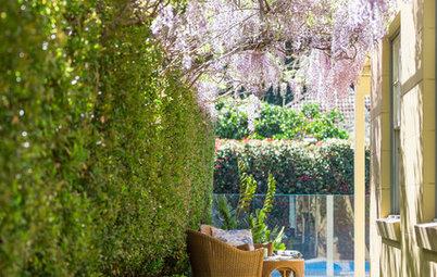 Bring Those Sorry Sideway Gardens to Life