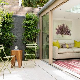 Idéer för en liten modern uteplats på baksidan av huset, med en vertikal trädgård