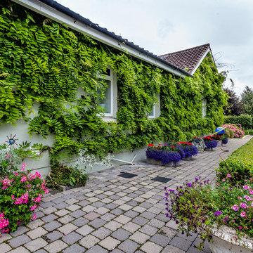 Kildare Garden2