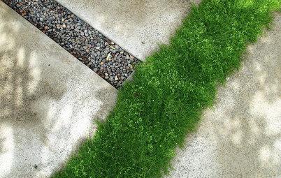 Greening Between the Lines