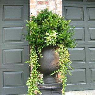 Idee per un patio o portico chic di medie dimensioni e davanti casa con un giardino in vaso, lastre di cemento e nessuna copertura