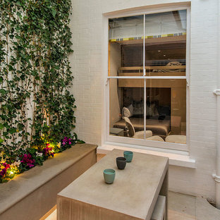 Design ideas for a small contemporary courtyard patio in London with a living wall and concrete paving.