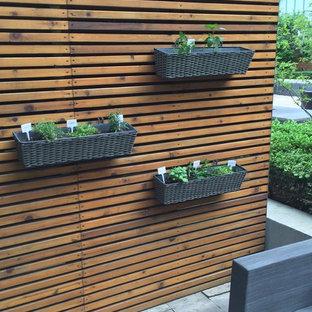 Foto di un piccolo patio o portico minimalista dietro casa con un giardino in vaso, nessuna copertura e pavimentazioni in cemento